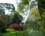 Lemon Mint Cucumber Spritzer