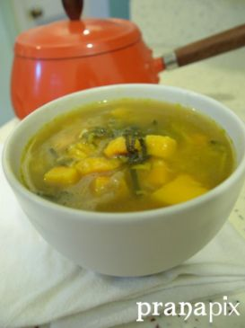 Leek and Squash Soup