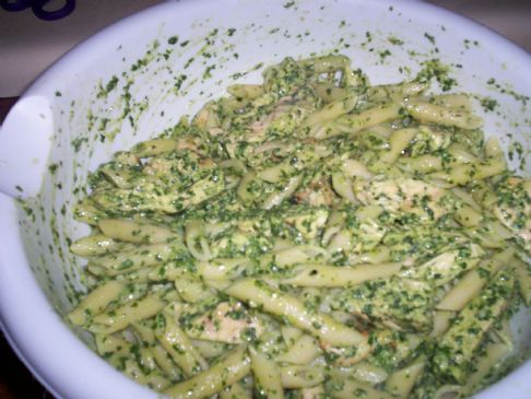 Fresh Basil Pesto, Chicken Penne