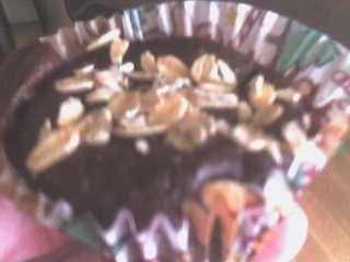 Chocolate Pumpkin Oat Muffins