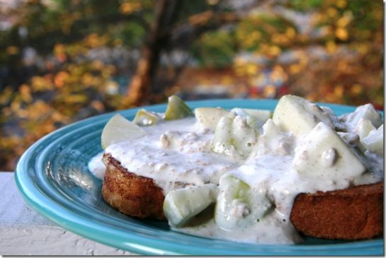 FANNETASTIC FOOD's Cinnamon Apple Yogurt Sauce