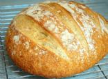 Artisan Bread in 5 Minutes a Day Master Recipe