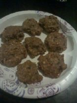 Low Carb Chocolate Oatmeal Cookies