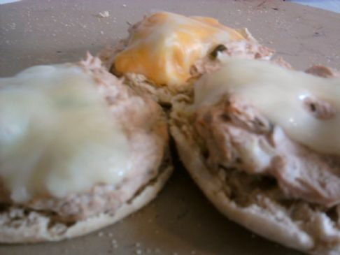 Kid Friendly Tuna Melt