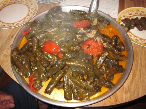 Stuff grape leaves and italian squash