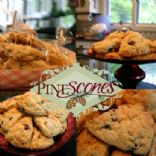 PineScones of the Sandhills