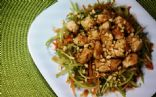 Asian Chicken with Spicy Peanut Sauce PSMF