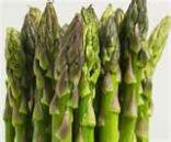Asparagus Vegetable & Cream Sauce w/Croutons