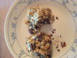 Protein Oatmeal Cookie