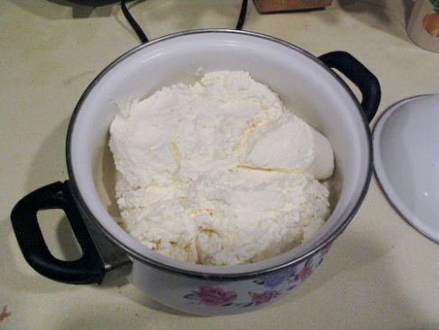 Tvorog (Russian cheese)