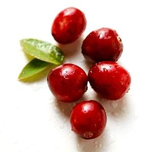 Cranberry Cleanser