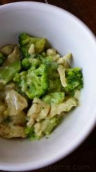Noodle-less Chicken and Broccoli Alfredo