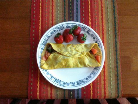 E2 Omelet
