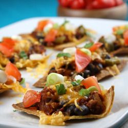 Weight Watchers Nachos Supreme (from recipe book)
