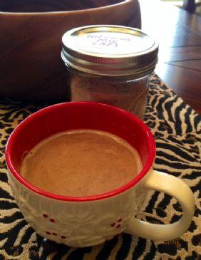 Hot Cocoa or Mocha Mix with Stevia
