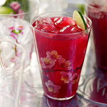 Iced Hibiscus Tea