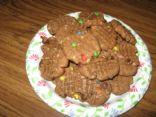 Cocoa-y monsterish cookies