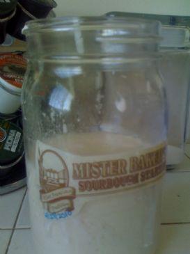 Whole Wheat Sour Dough Starter