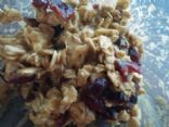 Oatmeal Craisin in Love with Protein