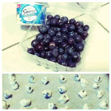 Yogurt-Covered Blueberries