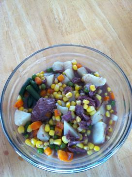 venison vegetable soup(nama sarah)