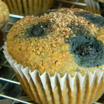 Gluten-Free, Soy-Free, Vegan Blueberry Cornmeal Muffins