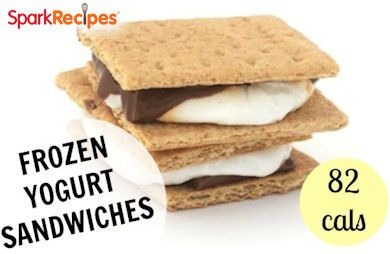 Frozen Yogurt Sandwiches