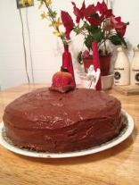 Gluten Free Basic Cake Recipe Chocolate or yellow :)